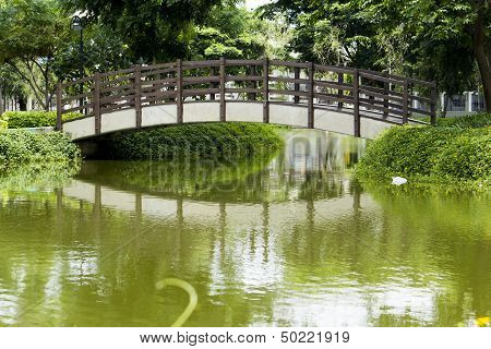 Garden and a wooden bridge