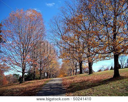 Autumn Fall colors nature trail
