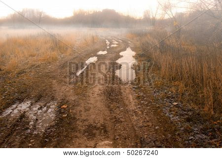 Forbidden Countryside Road In Field At Autumn Fogy Morning.