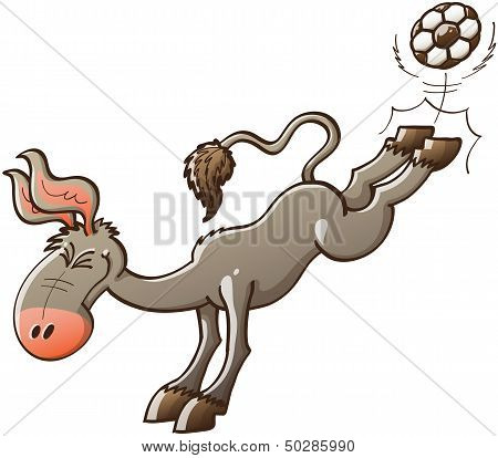 Cool donkey playing soccer