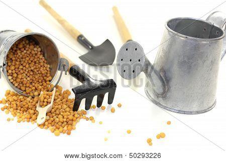 Fertilizer With Bucket