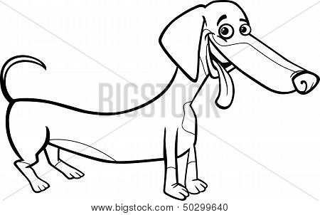 Dachshund Dog Cartoon For Coloring Book