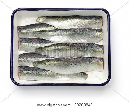 cooking process of pickled herring, sliced salted herrings on white enamel tray