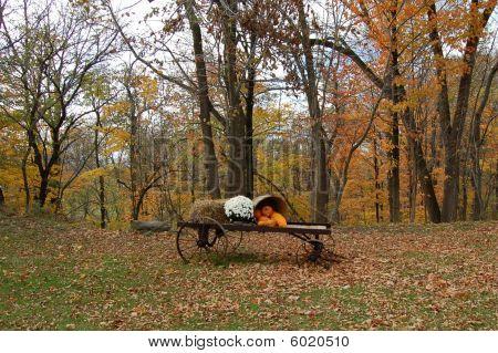 Autumn Leaves , A Wagon, and  Pumpkins
