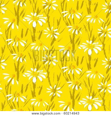 Vector pattern with hand drawn daisy flowers