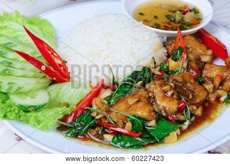 Fried Basil Leave With Snapper Fish On Rice
