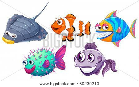 Illustration of the five different fishes on a white background