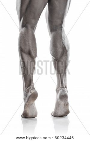 Strong Athletic Man Legs