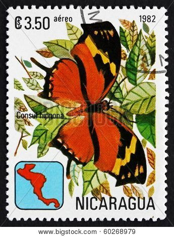 Postage Stamp Nicaragua 1982 Tiger Leafwing, Butterfly