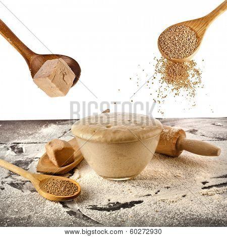 Fresh and dry yeast set  isolated on white background