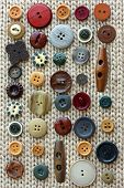 picture of tan lines  - a natural colored collection a various vintage sewing buttons are in rows on a background of soft woven tan fabric - JPG