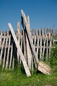 picture of hayfield  - Timber battens and batten fields of an old garden fence - JPG
