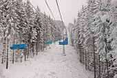 Chairlift In Snowy Forest