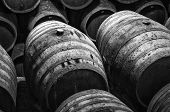 stock photo of fermentation  - wine barrels stacked in winery in white and black - JPG