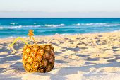 stock photo of pina-colada  - Pina Colada drink in fresh pineapple on the beach - JPG