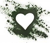 stock photo of algae  - Spirulina powder  - JPG