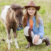 stock photo of foal  - Little foal  - JPG