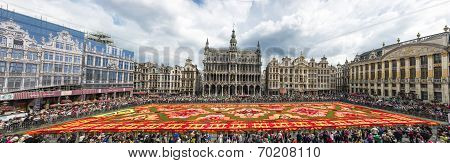 Floral Carpet 2014 In Brussels