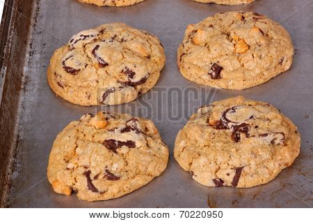Freshly Baked, Home-made Chocolate And Butterscotch Chip Cookies