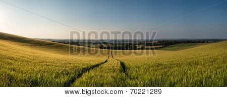 Stunning Countryside Panorama Landscape Wheat Field In Summer Sunset