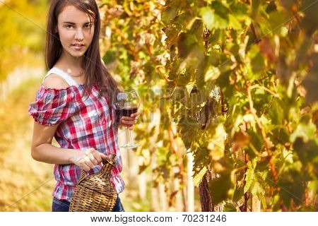 Vintner in the vineyard with glass of wine