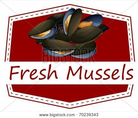 Illustration of fresh mussels