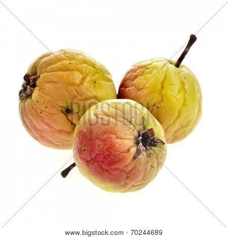 dried apple fruit isolated on white background