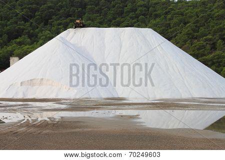 Marine salt production