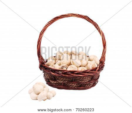 Wicker basket with champignon mushrooms.
