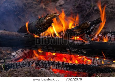 burning wods on fire place