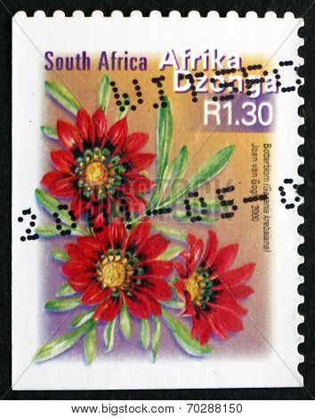 Postage Stamp South Africa 2000 Botterblom, Flowering Plant