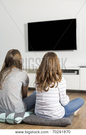 Rear view of sisters watching TV at home