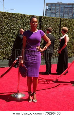 LOS ANGELES - AUG 16:  Aisha Tyler at the 2014 Creative Emmy Awards - Arrivals at Nokia Theater on August 16, 2014 in Los Angeles, CA
