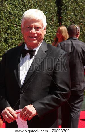 LOS ANGELES - AUG 16:  Robert Morse at the 2014 Creative Emmy Awards - Arrivals at Nokia Theater on August 16, 2014 in Los Angeles, CA