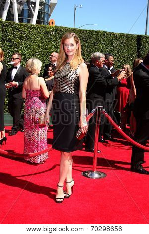 LOS ANGELES - AUG 16:  Judy Greer at the 2014 Creative Emmy Awards - Arrivals at Nokia Theater on August 16, 2014 in Los Angeles, CA