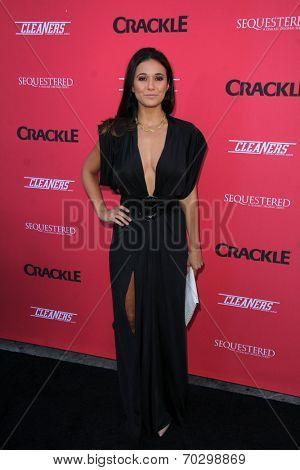 LOS ANGELES - AUG 14:  Emmanuelle Chriqui at the Crackle Presents the Premieres of
