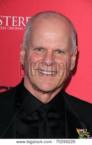 LOS ANGELES - AUG 14:  Chris Ellis at the Crackle Presents the Premieres of