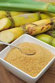 foto of sugar industry  - Close up Sugar and sugarcane on wooden table - JPG