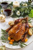 picture of roast duck  - Citrus glazed roasted duck stuffed with rice garnished with apples kumquats and sage - JPG