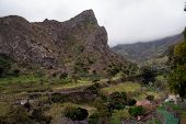 Fertile land in Cape Verde