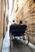 pic of chariot  - Tourist chariot in the old city of Palma de Mallorca - JPG