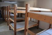 picture of bunk-bed  - Bunk beds in a camp - JPG