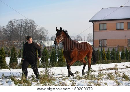 Teenager Boy And Bay Horse Running Down The Village Street