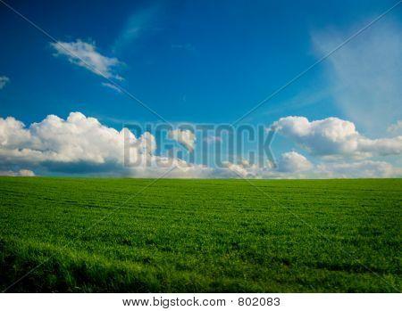 Landscape as a wallpaper