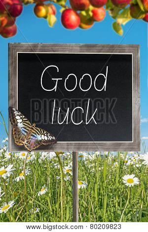 Chalkboard With Text Good Luck