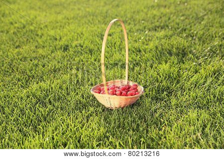 Raspberry Basket