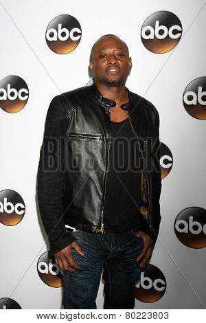 LOS ANGELES - JAN 14:  Omar Epps at the ABC TCA Winter 2015 at a The Langham Huntington Hotel on January 14, 2015 in Pasadena, CA
