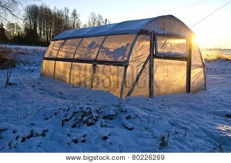 Greenhouse Hothouse On Farm Field On Snow And Winter Sunrise