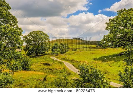 Scenic green countryside landscape