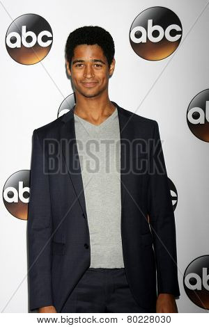 LOS ANGELES - JAN 14:  Alfred Enoch at the ABC TCA Winter 2015 at a The Langham Huntington Hotel on January 14, 2015 in Pasadena, CA